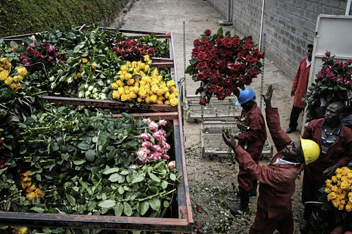 Covid-19 disrupts African flower producers